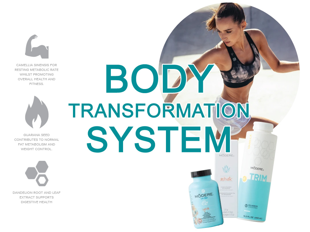 body trasformation system